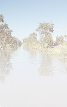Croisière vers le Canal de pangalanes
